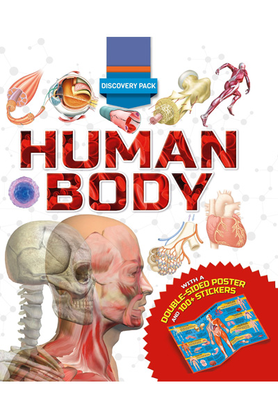 Discovery Pack: Human Body